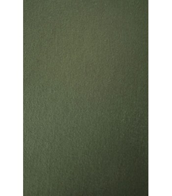 P6 Cotton Moleskin
