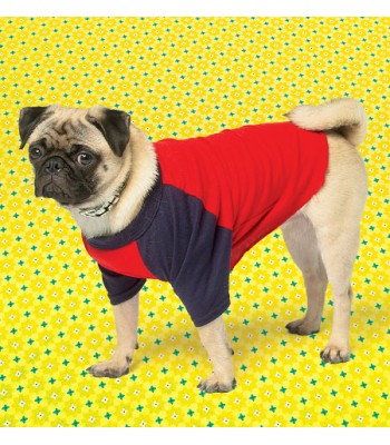 Pattern K4033 Dog coats